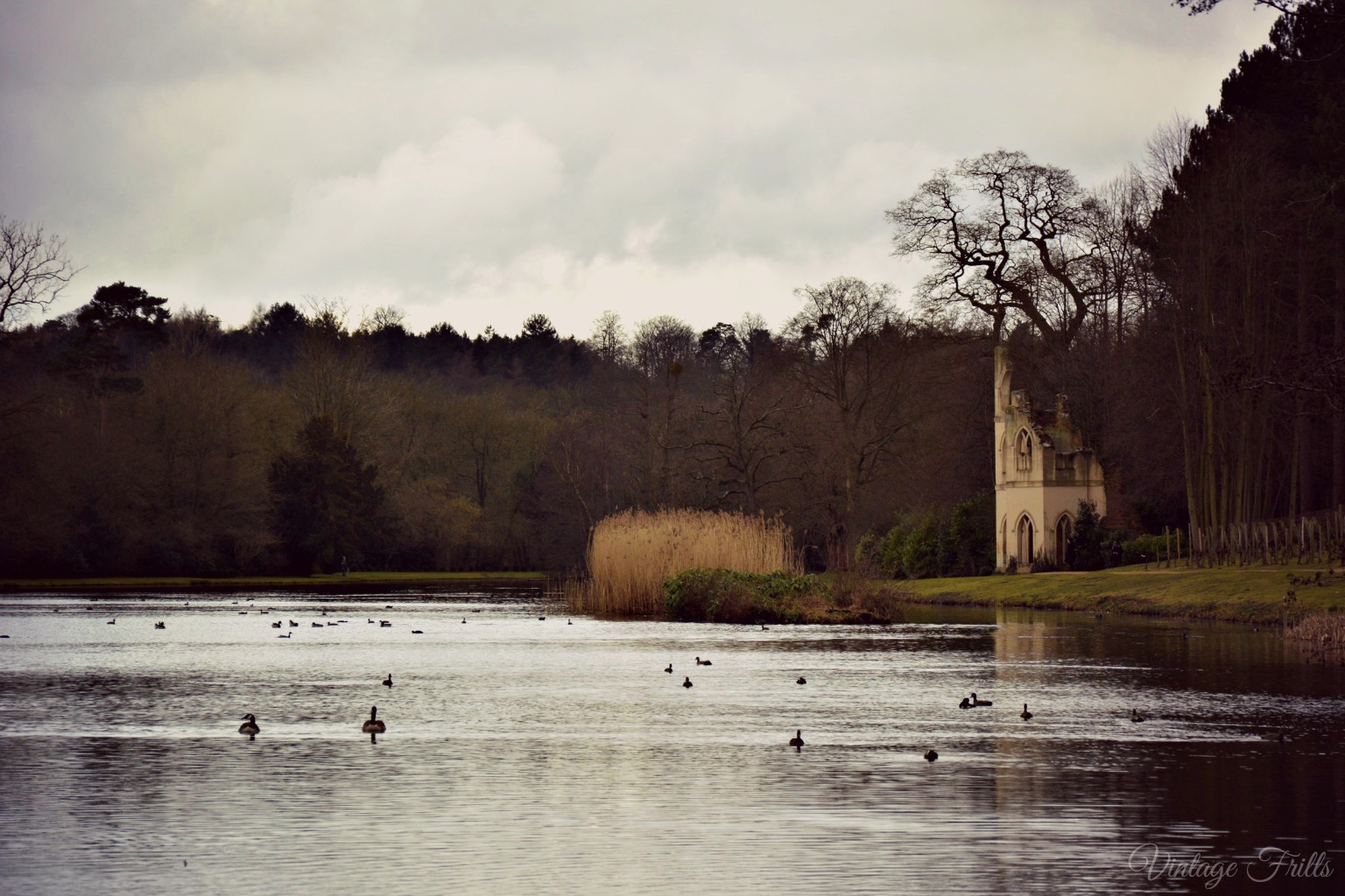 Painshill Lake and Ruined Abbey